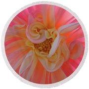 Dahlia Flower Sunlit Pink White Dahlia Garden Floral  Round Beach Towel