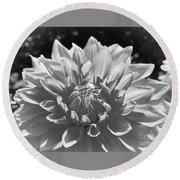 Dahlia In Black And White 2 Round Beach Towel