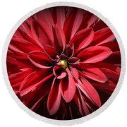 Dahlia Radiant In Red Round Beach Towel