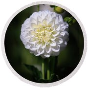 Dahlia White Flowers II Round Beach Towel