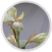 Dainty Orchid Round Beach Towel