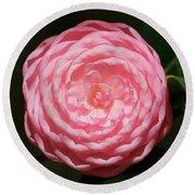 Dainty Pink Camellia Round Beach Towel