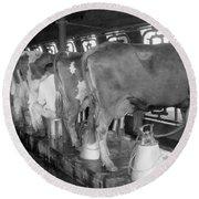 Dairy Farm, C1920 Round Beach Towel