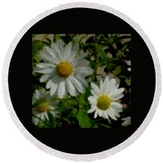Daisies By The Number Round Beach Towel
