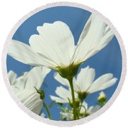Daisies Floral Art Prints Canvas Daisy Flowers Blue Skies Round Beach Towel