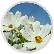 Daisies Flowers Art Prints White Daisy Flower Gardens Round Beach Towel