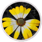 Daisy Crown Round Beach Towel