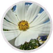 Daisy Flower Garden Artwork Daisies Botanical Art Prints Round Beach Towel