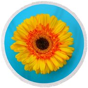 Daisy - Yellow - Orange On Light Blue Round Beach Towel