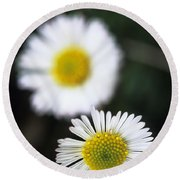 Daisys Round Beach Towel
