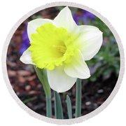 Dallas Daffodils 20 Round Beach Towel
