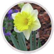 Dallas Daffodils 71 Round Beach Towel