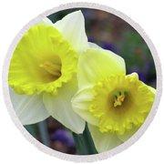 Dallas Daffodils 79 Round Beach Towel