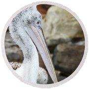 Dalmatian Pelican Round Beach Towel