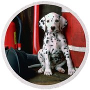 Dalmatian Puppy With Fireman's Helmet  Round Beach Towel by Garry Gay