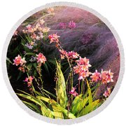 Dance Of The Orchids Round Beach Towel