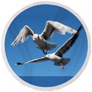 Aerial Dance Of The Seagulls Round Beach Towel