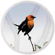 Dancing Blackbird Round Beach Towel