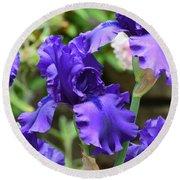 Dancing Blue Irises Round Beach Towel