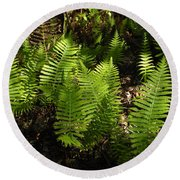 Dancing Ferns Round Beach Towel