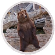 Dancing Grizzly Round Beach Towel