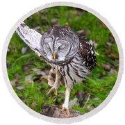 Dancing Owl Round Beach Towel