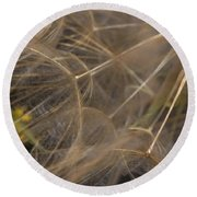 Dandelion Eighty Three Round Beach Towel
