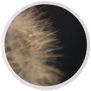 Dandelion Fifty Seven Round Beach Towel