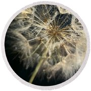 Dandelion Forty One Round Beach Towel