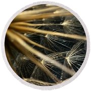 Dandelion Forty Three Round Beach Towel