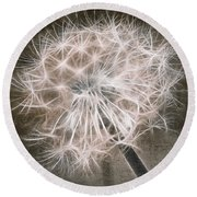 Dandelion In Brown Round Beach Towel by Aimelle