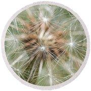 Dandelion Sparkles Round Beach Towel
