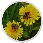 Dandelions And Bees Round Beach Towel