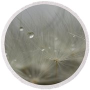 Dandy Dew Two 2 Round Beach Towel