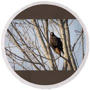 Dark-morph Western Red-tailed Hawks Round Beach Towel