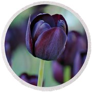 Dark Purple Tulip Round Beach Towel