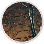 Dark Woods II Round Beach Towel