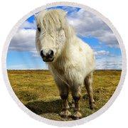 Dartmoor Pony Round Beach Towel