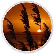 Dawn Grasses Round Beach Towel