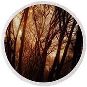 Dawn In The Trees Round Beach Towel