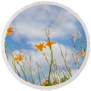 Day Lilies Look To The Sky Round Beach Towel