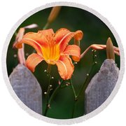 Day Lilly Fenced In Round Beach Towel