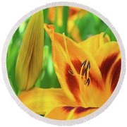 Daylily Bud And Bloom Round Beach Towel
