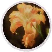 Daylily Dream Round Beach Towel