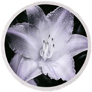 Daylily Flower With A Tint Of Purple Round Beach Towel