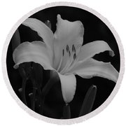 Daylily In Black And White Round Beach Towel
