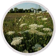 Days Of Queen Annes Lace Round Beach Towel
