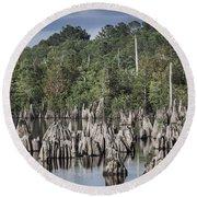 Dead Lakes Cypress Stumps Round Beach Towel