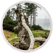 Dead Tree At Ecola Park Round Beach Towel