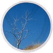 Dead Tree Round Beach Towel